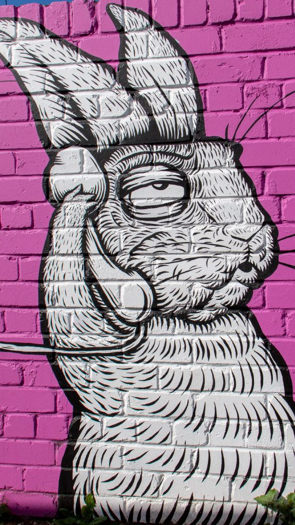 Call to Action - bunny on phone call wall art